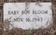 Profile photo:  Baby Boy Bloom