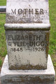 Elizabeth Frances <I>Carpenter</I> Wylie-Diggs