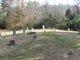 Arnwine Cemetery #01