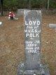 Loyd Polk