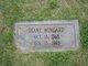 Diane Wingard