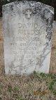 David Fields