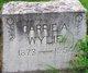 Carrie A. <I>Nelson</I> Wylie