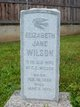 Elizabeth Jane <I>Mathews</I> Wilson