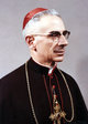 Profile photo: Cardinal Francesco Carpino