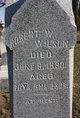 Robert White Wilson