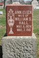 Profile photo:  Ann Eliza <I>Pugh Hadley</I> Hall