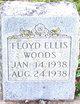 Floyd Ellis Woods