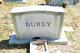 Paul Richard Burey