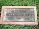 "Profile photo:  Alexander ""Babe"" Hollingsworth"