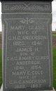 James H. Anderson