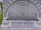 Lucy A. <I>Smith</I> Haseltine