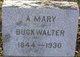 Profile photo:  Anna Mary Buckwalter