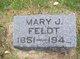 Profile photo:  Mary Josephine <I>Johnson</I> Feldt