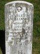 Charles M. Williams