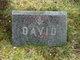 David M Briggs