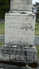 Thomas E Green