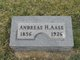 Profile photo:  Andreas Henrik Aase