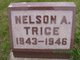 Nelson Arnold Trice