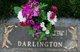 Courtney Maurice Darlington