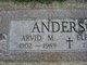 Arvid Magnus Anderson