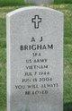 Profile photo:  A J Brigham