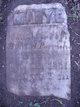 Mary E. Parrish