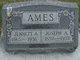 Joseph Arnold Ames
