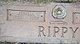 Profile photo:  Annie Jewel <I>Jackson</I> Rippy
