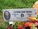 Carolynn <I>Lowe</I> Barnes