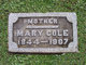 Mary <I>Jenkins</I> Cole
