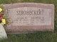 Profile photo:  George A. Strohecker