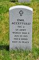 Profile photo:  Emil Accettulli