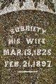 Sobriety <I>Williams</I> Carpenter