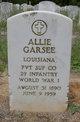 Profile photo:  Allie Garsee