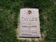 James William Taylor