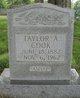 Taylor Adolphus Cook