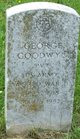 George Goodwyn
