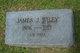 James Jefferson Wiley
