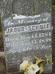 Jacob Schnee