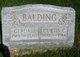 Profile photo:  Curtis C. Balding