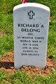 Profile photo:  Richard A DeLong