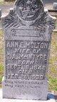 Ann E <I>Molton</I> McIntyre