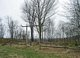 Berger Cemetery
