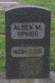 Profile photo:  Alden Mant Sprigg