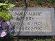 James Albert Perry