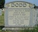 Walter A Dodd