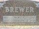 Gertrude Elizabeth <I>Wheeler</I> Brewer