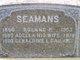 Roland P Seamans