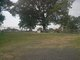 Ard Cemetery